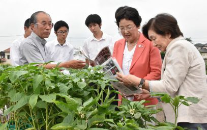 Welcoming athletes by growing Hungarian peppers: Tokyo Olympics and Paralympics host town, Tochigi City