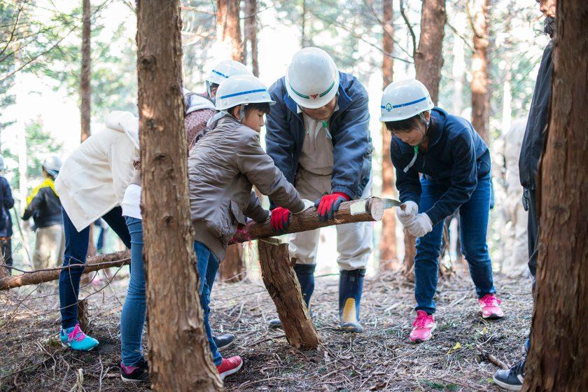 秦野の木々が、2020年東京オリンピックでアスリートたちを支える